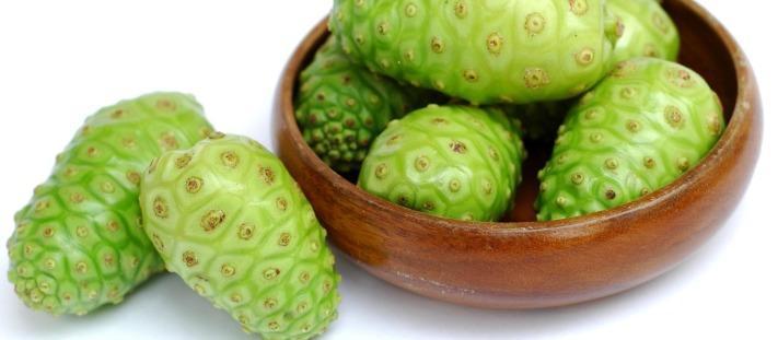 Noni: Tudo sobre Fruta Noni e Seu Suco, Que pode Ajudar a Emagrecer