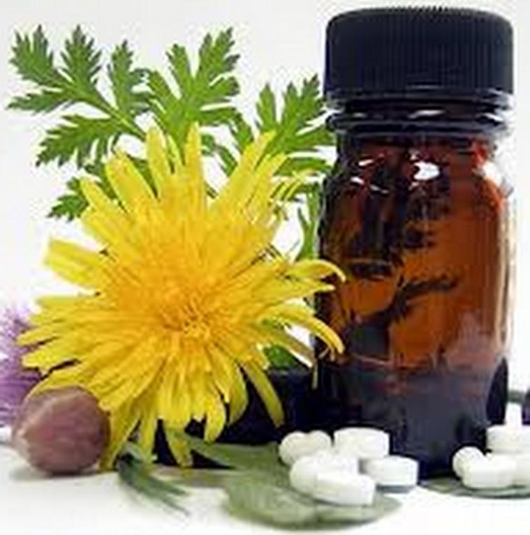 Remédio Caseiro para Emagrecer – Remédios Naturais para Perder Peso