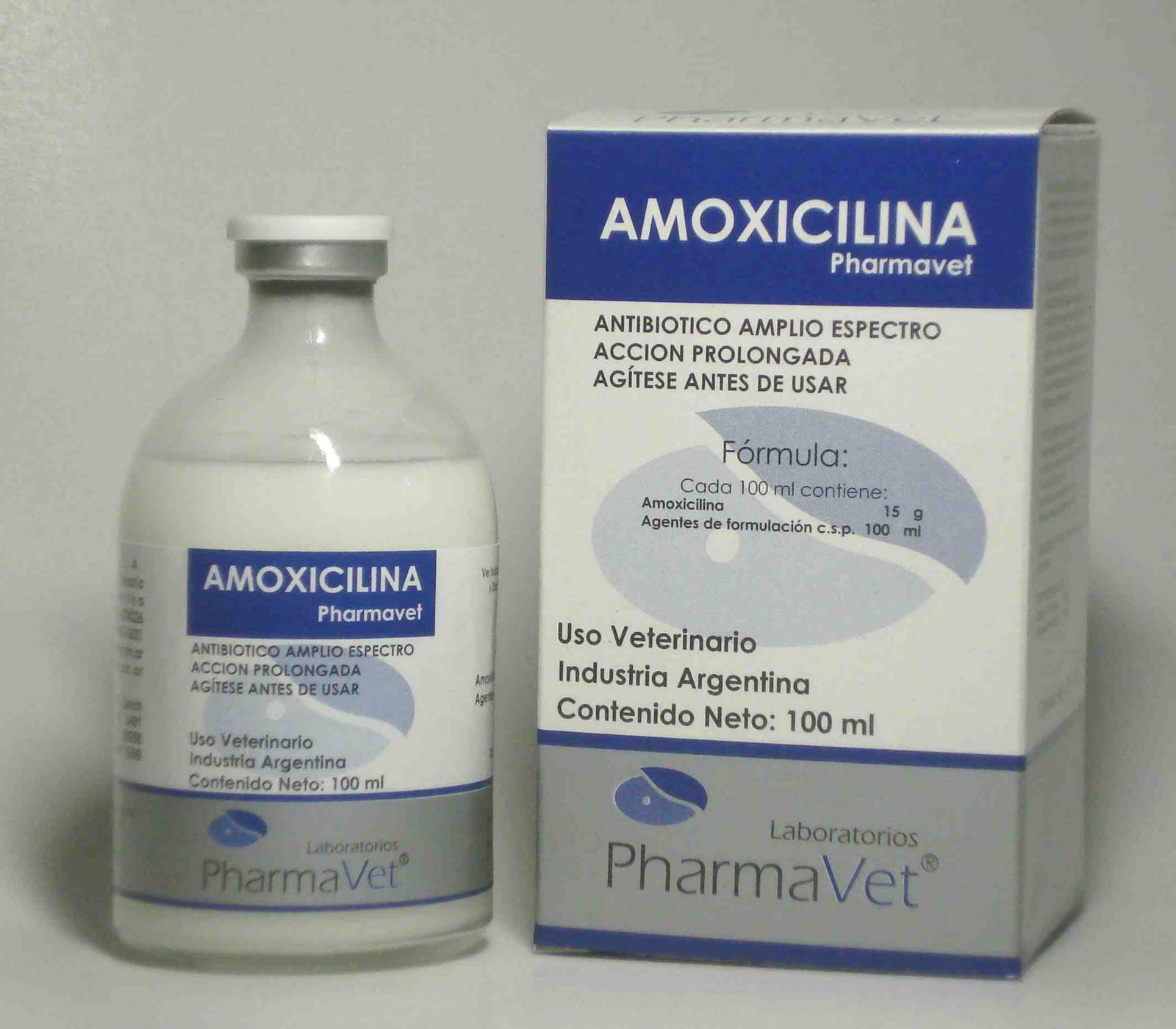 Amoxicilina (Oral)