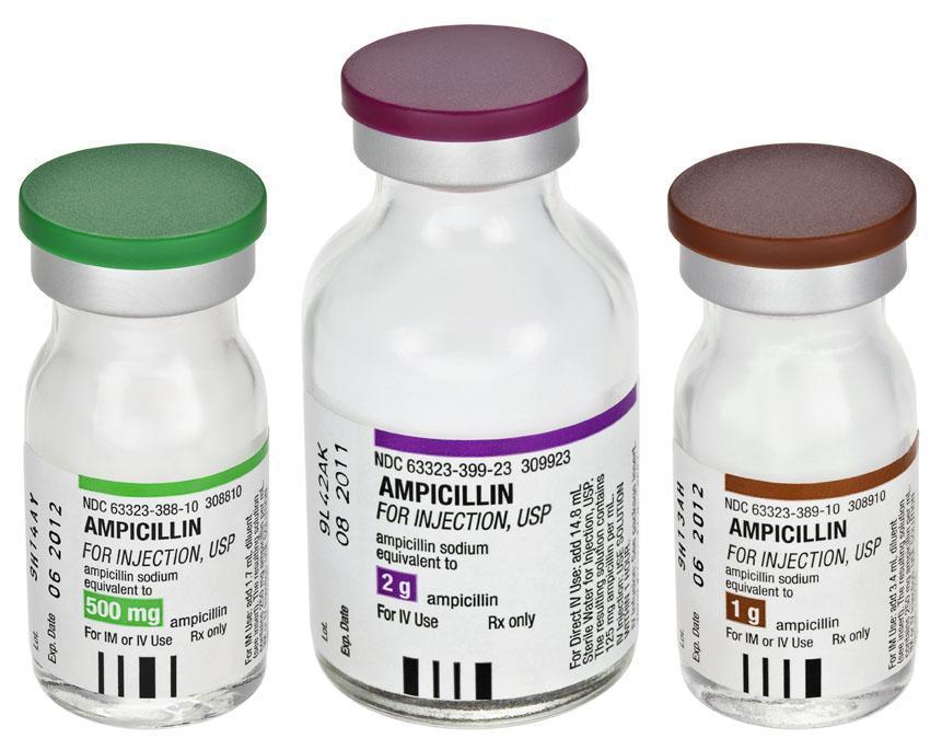 Ampicilina (Oral)