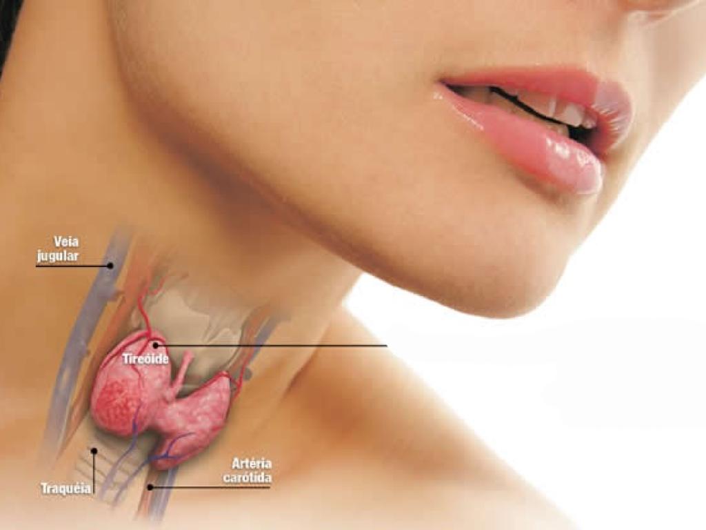 Hormônios Tireoidianos (Oral)