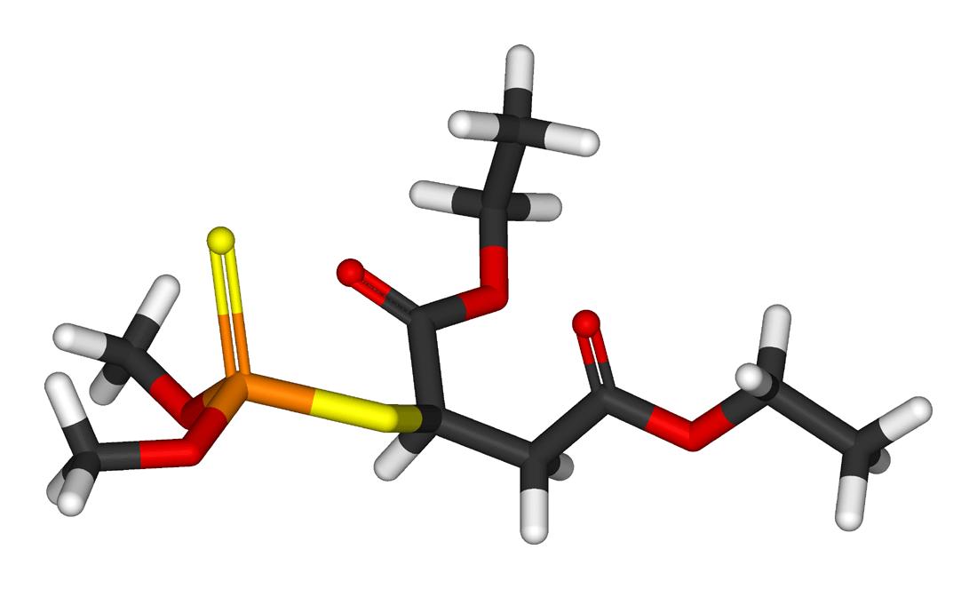 Malathion (Tópica)