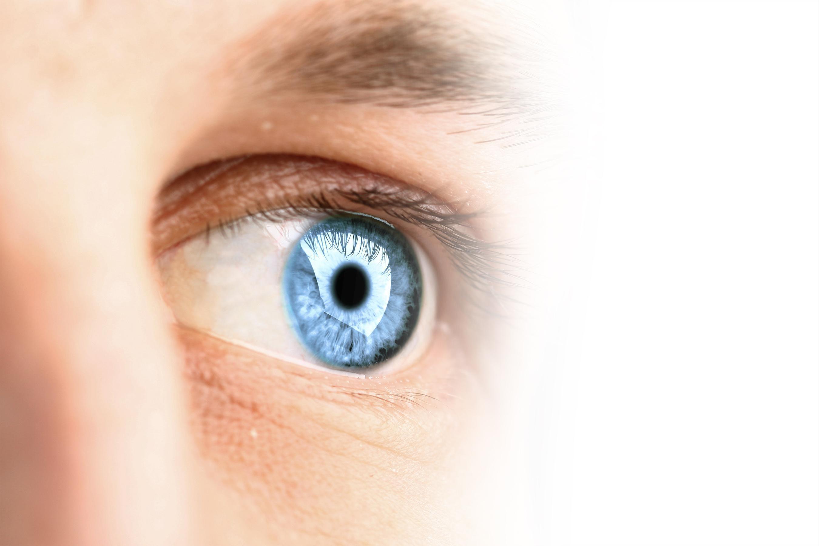 Medicamentos Para Glaucoma (Tipo Epinefrina)