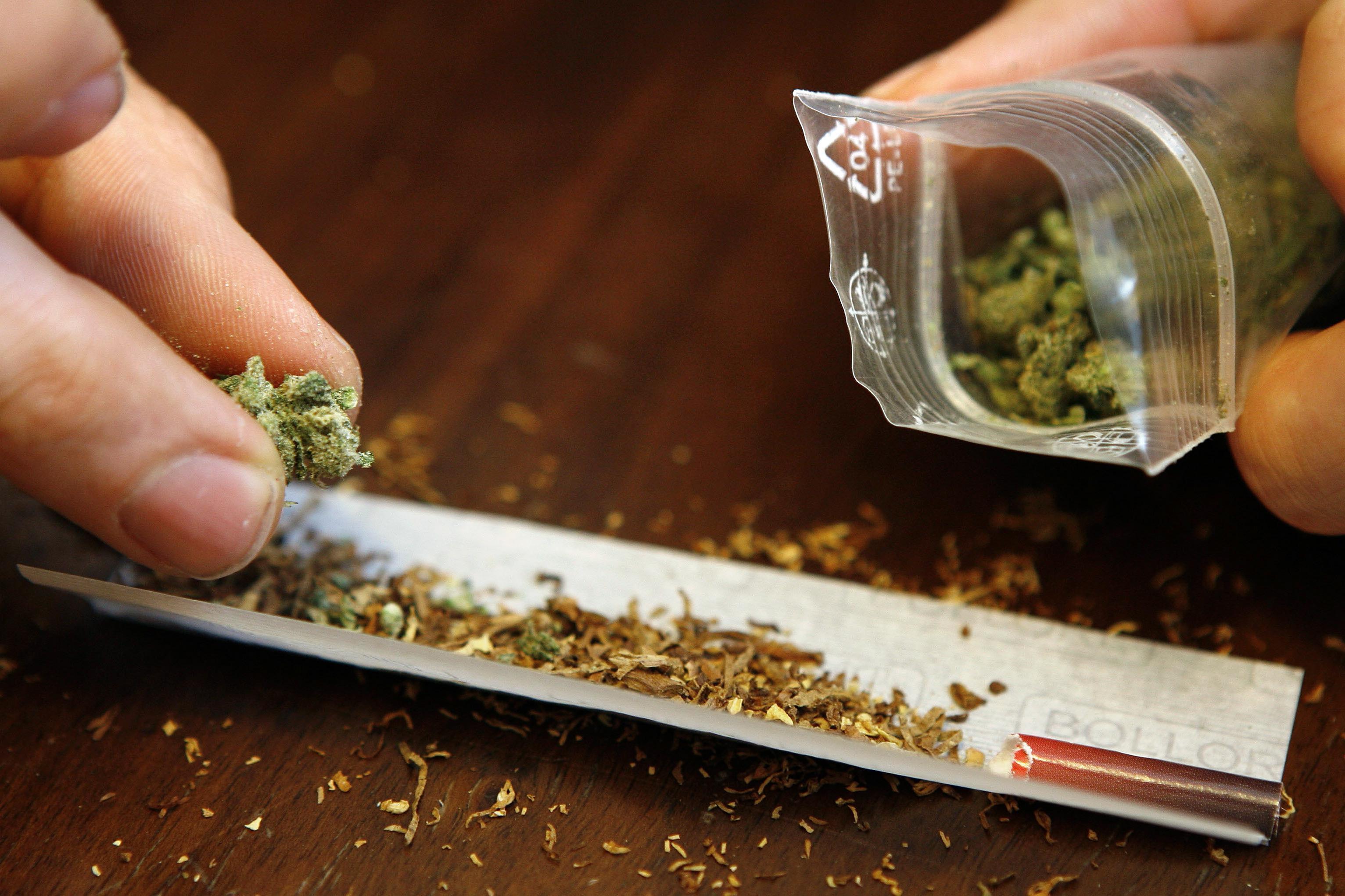 Informações sobre Cannabis (Maconha)