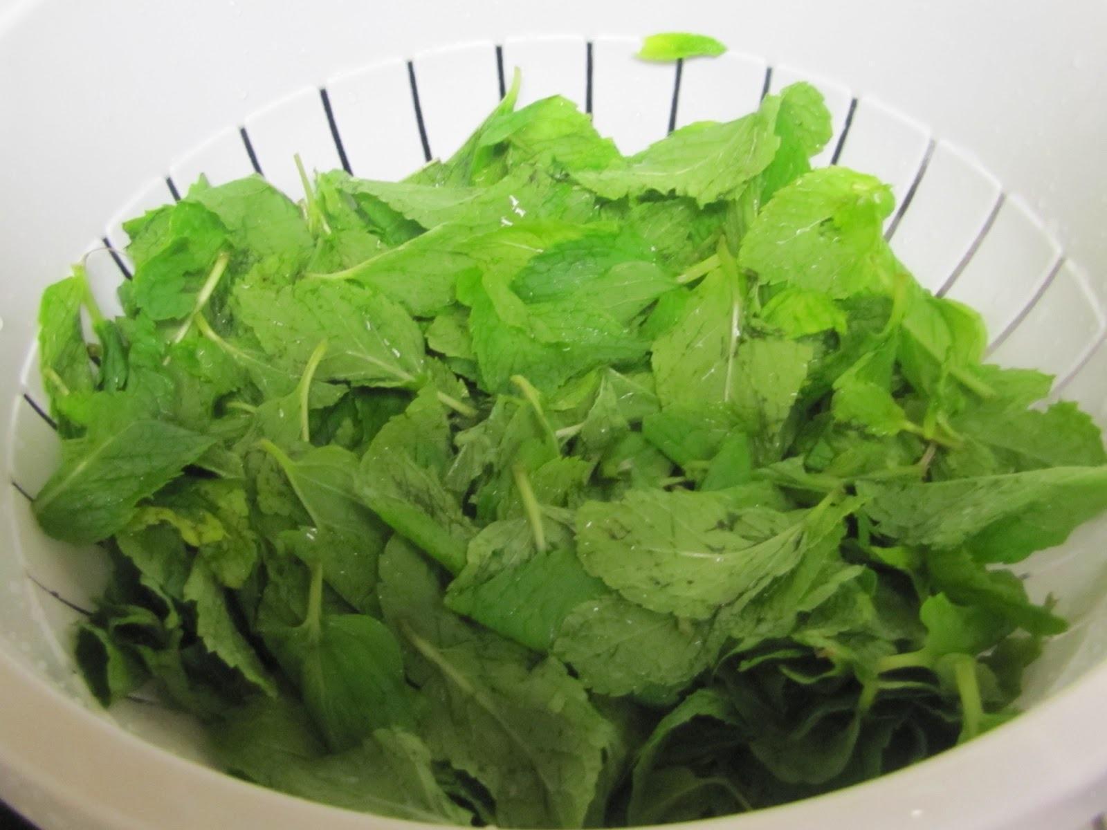 Mousse de Chá Verde para Dieta