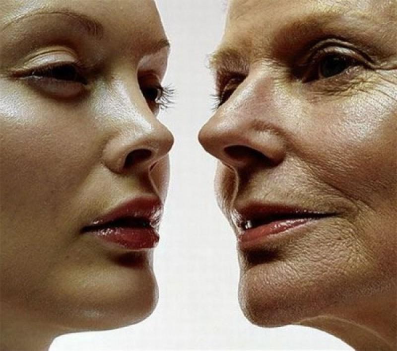 Alimentos Antioxidantes Que Rejuvenescem e Retardam o Envelhecimento Precoce