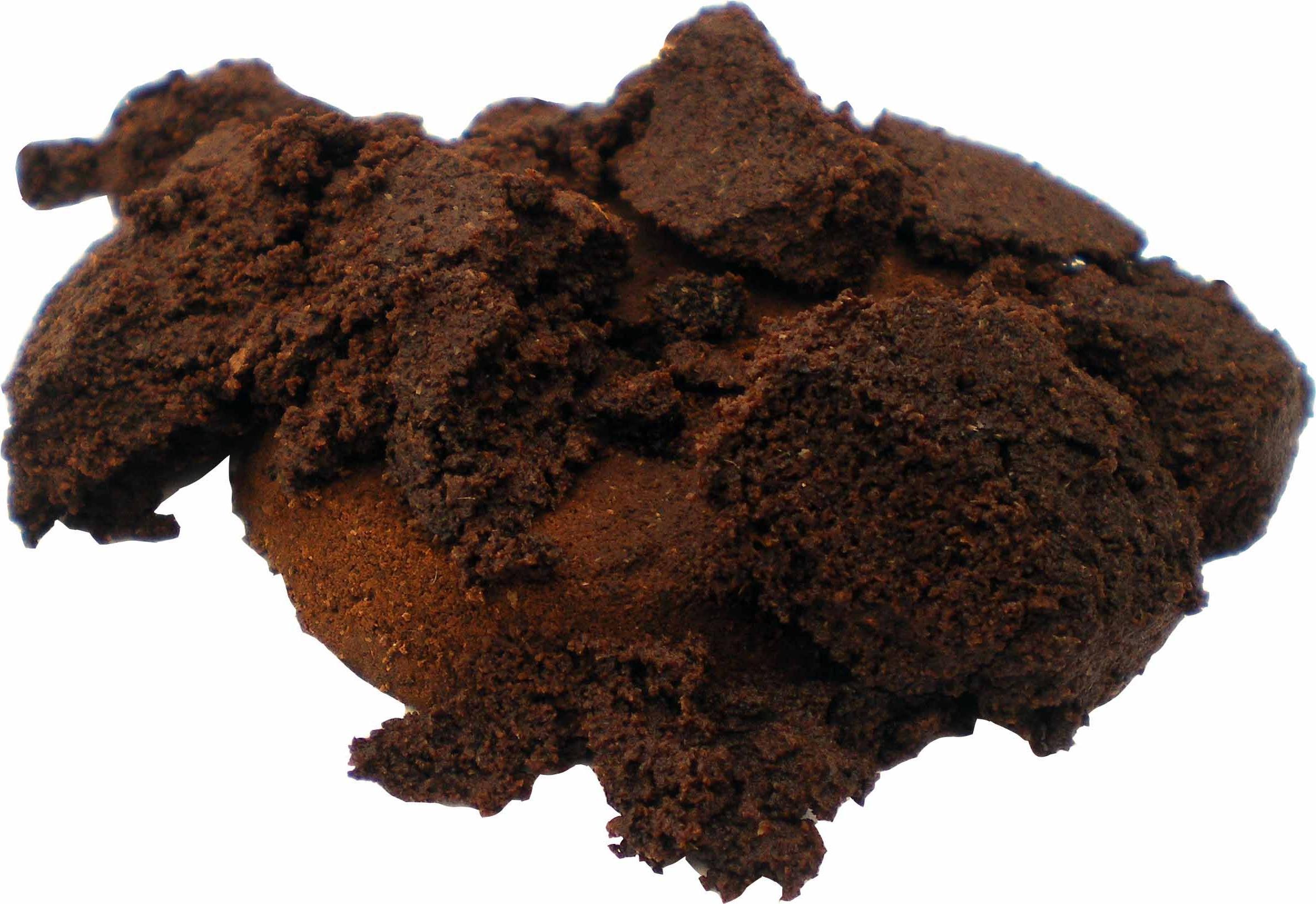 Borras de Café e Laranja Contra Celulite – Tratamento Caseiro Para Celulite Café e Laranja