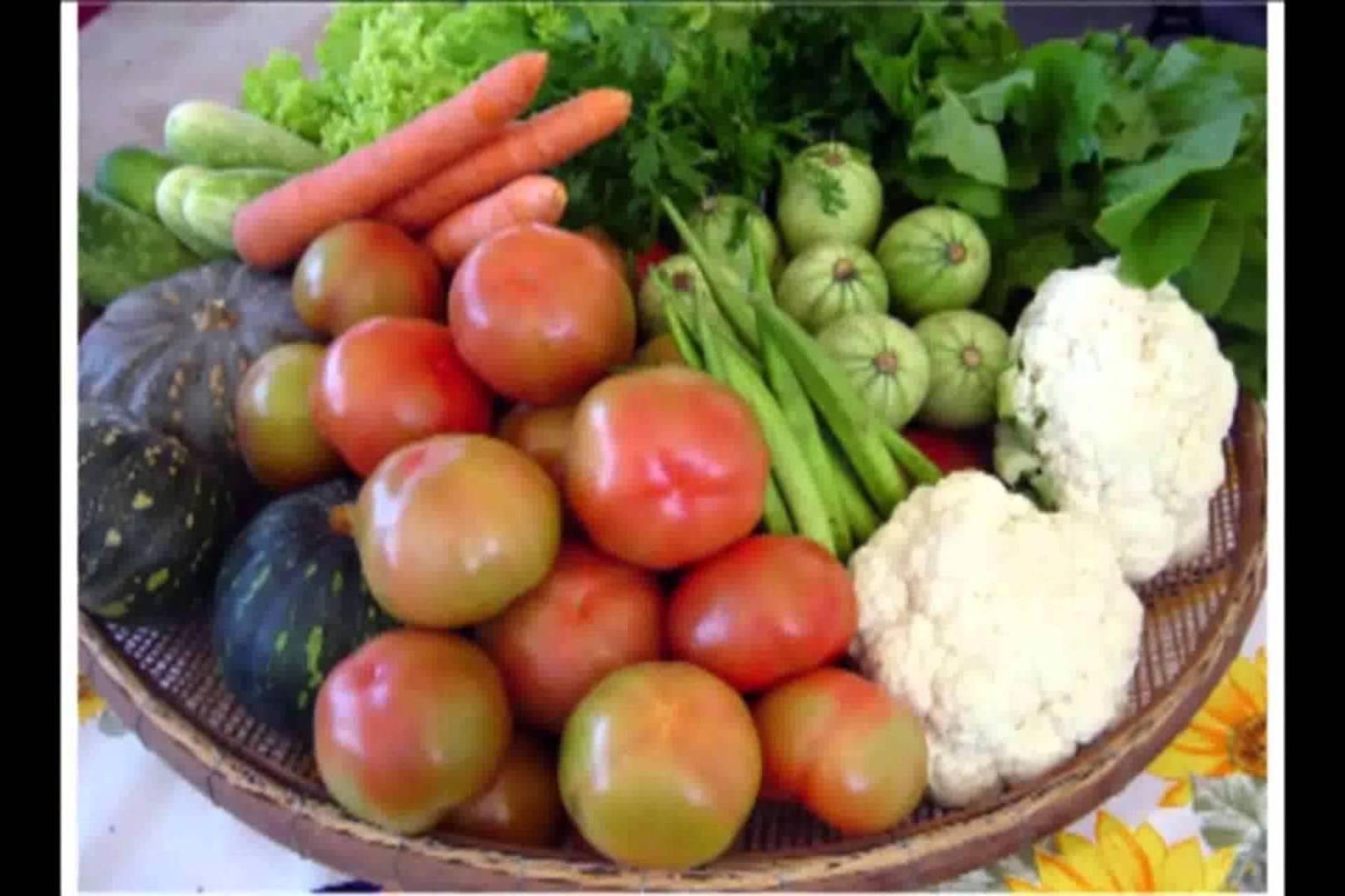 Dieta Vegetariana – Emagrecer Comendo Verduras na Dieta Vegetariana