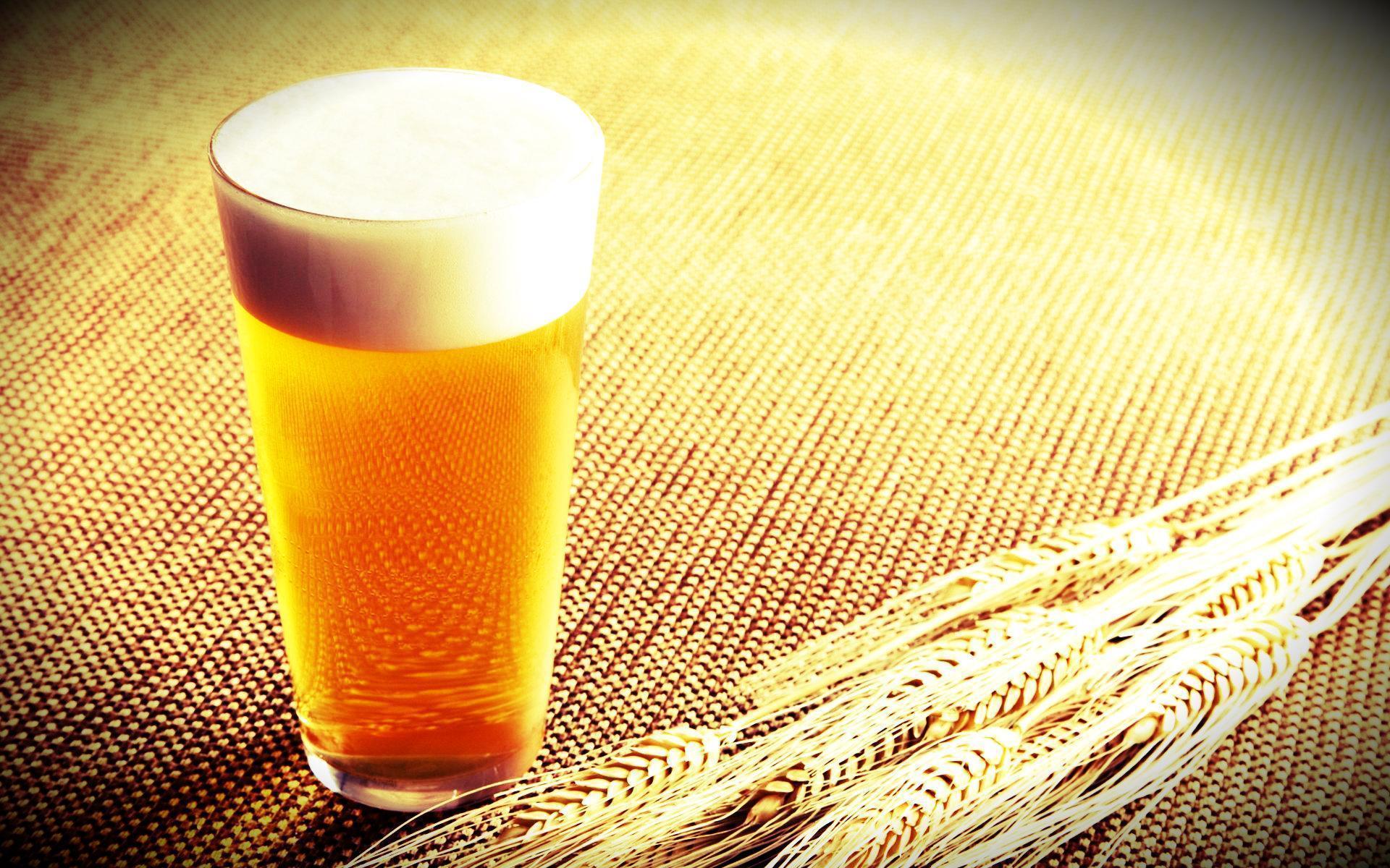 O Álcool Diminui a Perda De Peso, Por Quê?