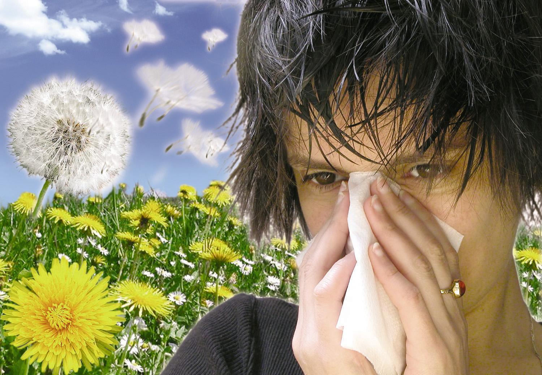 Alergia aos Ácaros – Dicas Como Evitar a Alergia aos Ácaros
