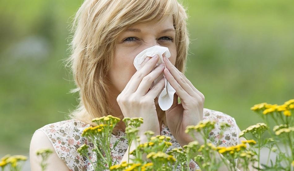 Anti-alérgicos Caseiros: Tratamentos e Alimentos Naturais para Alergias