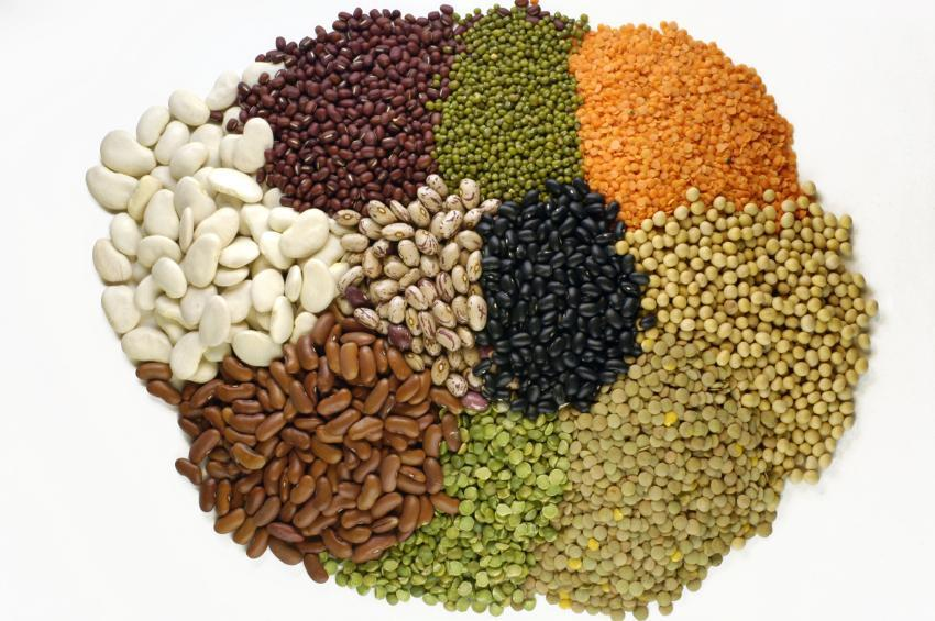 Produtos Alimentícios e Dicas para Saciar o Apetite