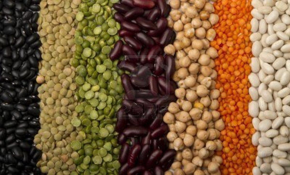 Proteínas Para Melhorar a Saúde