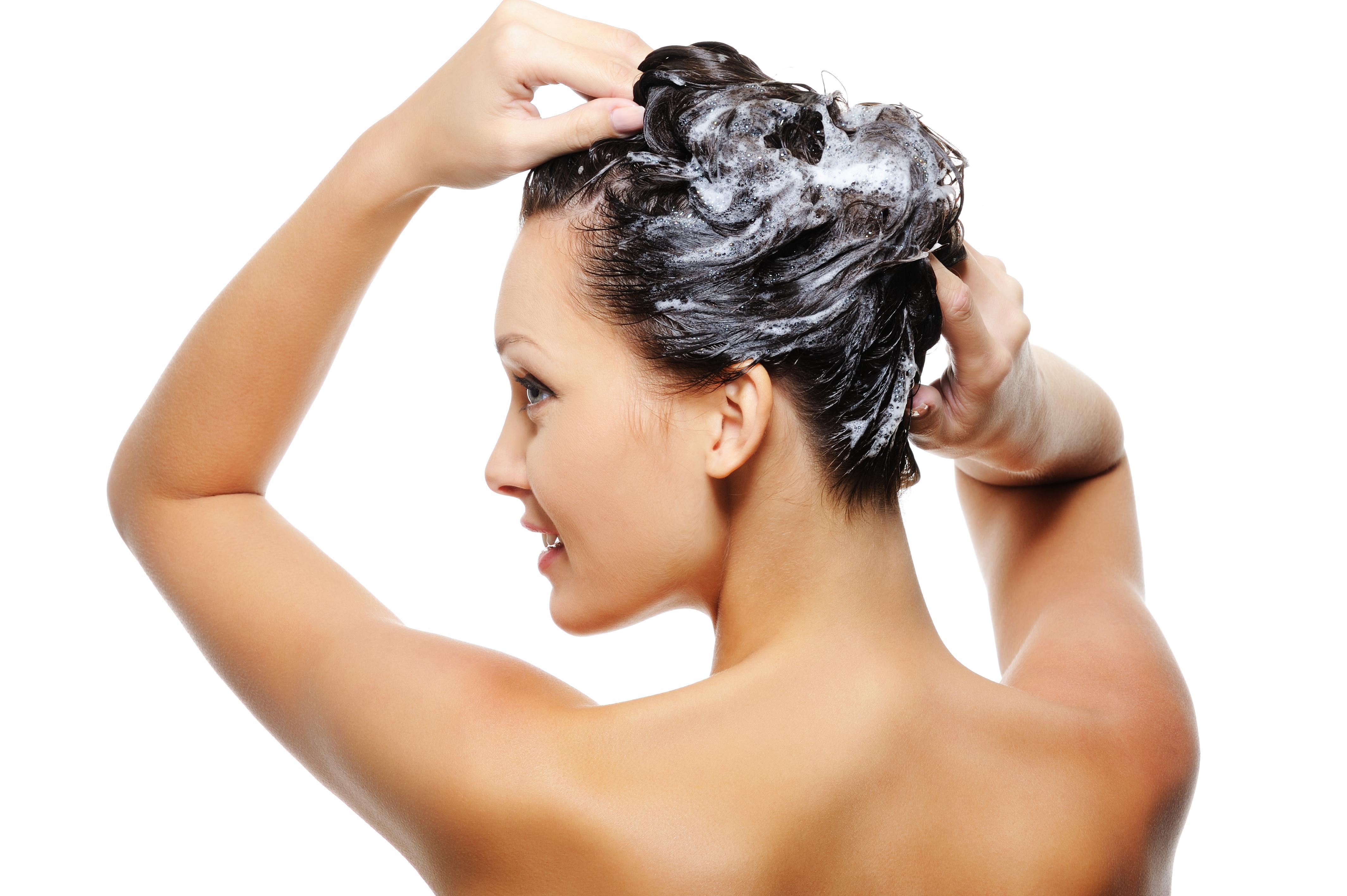 Shampoo Para Seborreia – Shampoos Caseiros Contra a Seborreia