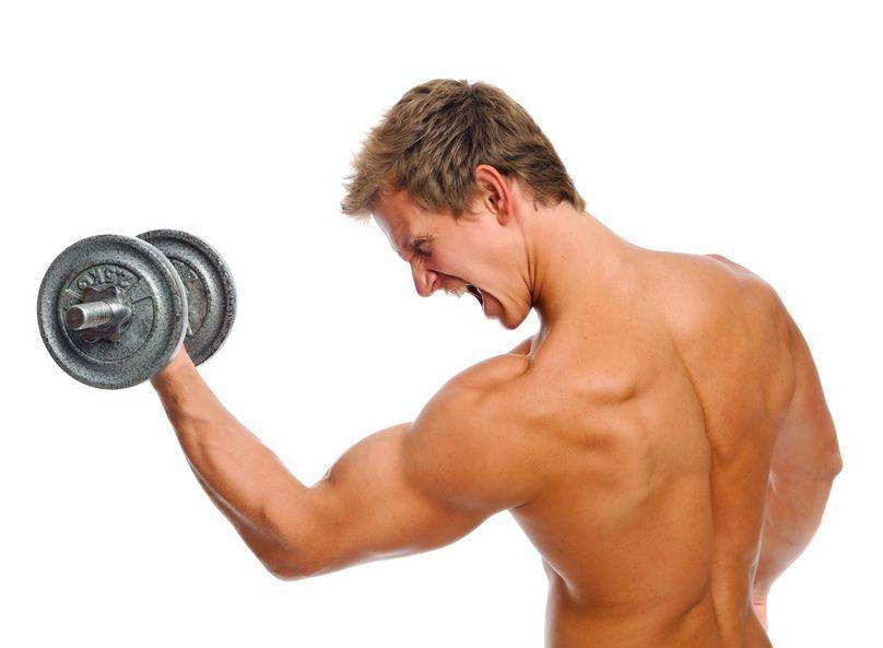 Treinamento para Bíceps – Sugestão de Treinamento para Bíceps