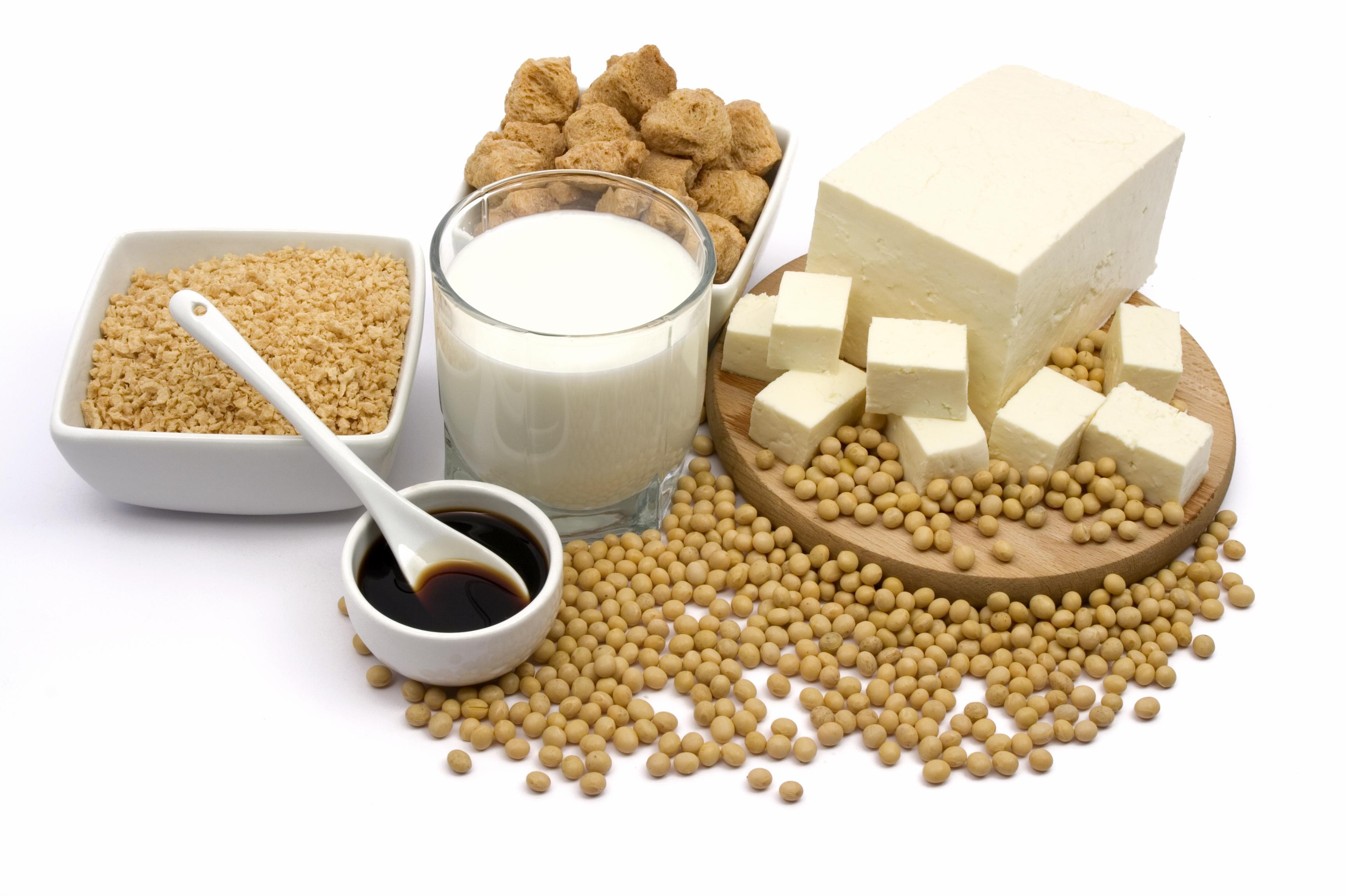 Dieta Vegetariana Rica em Proteínas