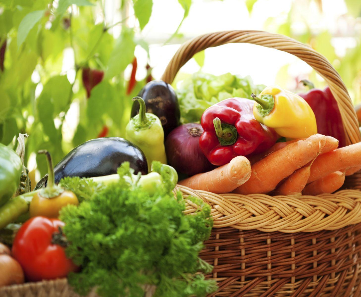Alimentos Naturais: Dieta Orgânica com a sua Horta em Casa