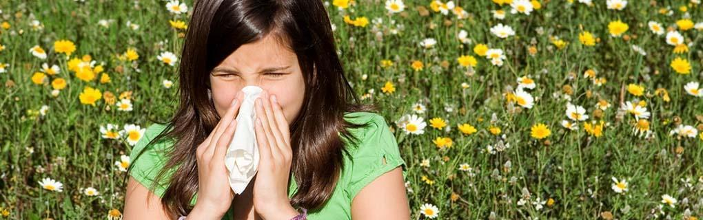 Alimentos Para Combater A Alergia Primaveral