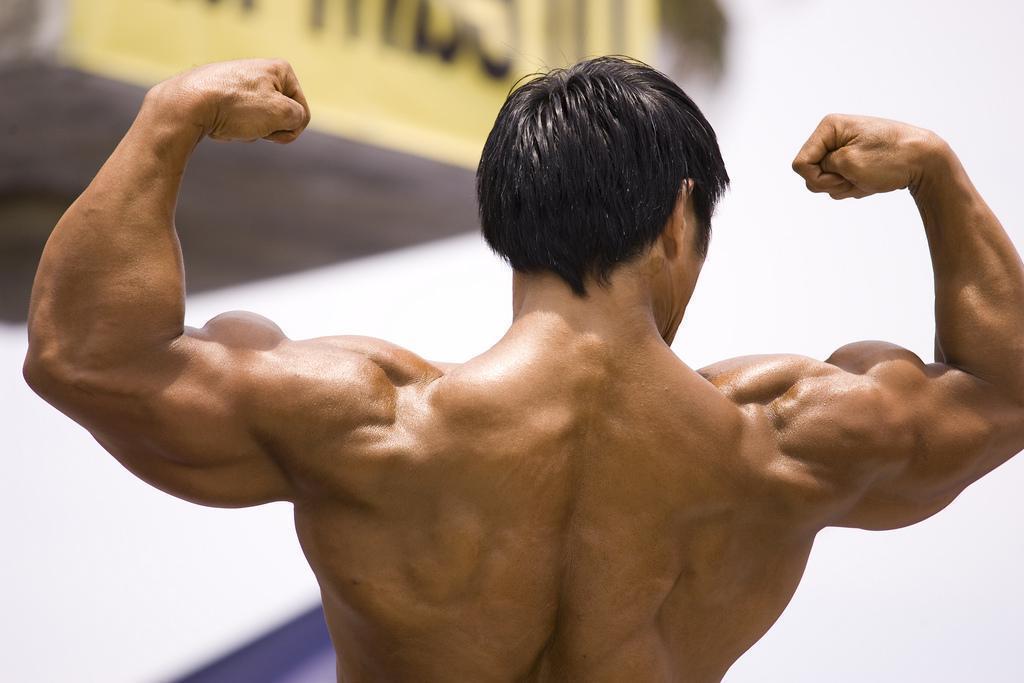 10 Seguros Caminhos Para O Crescimento Muscular