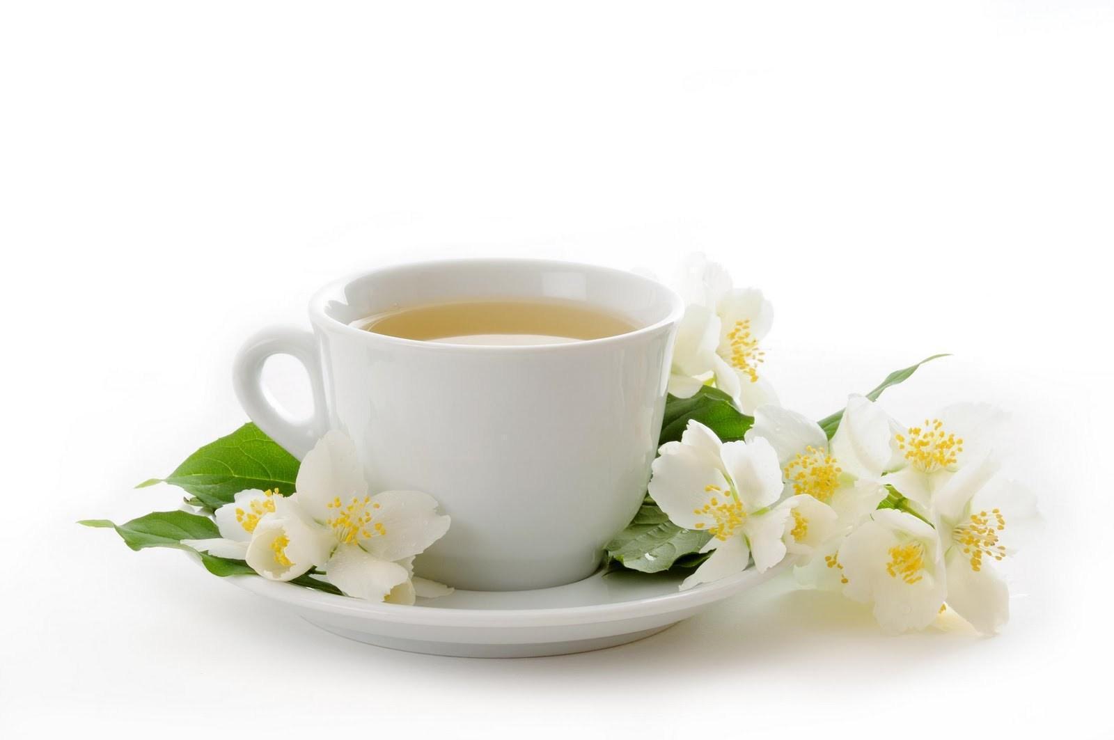 Chá Caseiro para Emagrecer – Chá Natural para Emagrecer