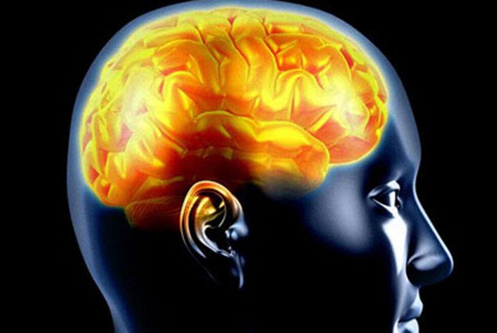 Remédios Caseiros Para Epilepsia