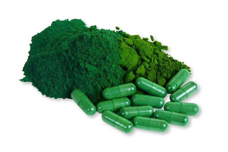 Algas AFA: As Propriedades de um Suplemento Surpreendente