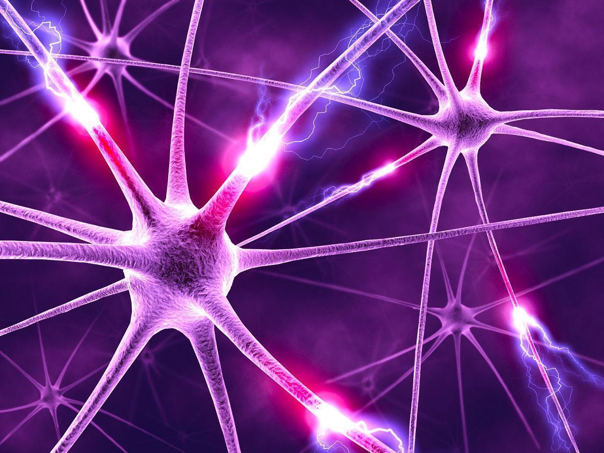 Eletrodos Contra a Depressão, Anorexia e a Doença de Alzheimer