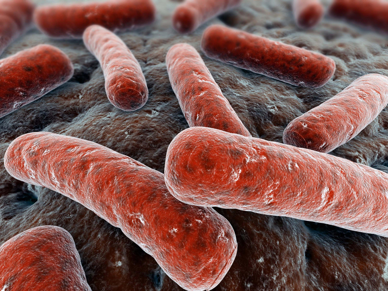 Remédios Caseiros para Tuberculose