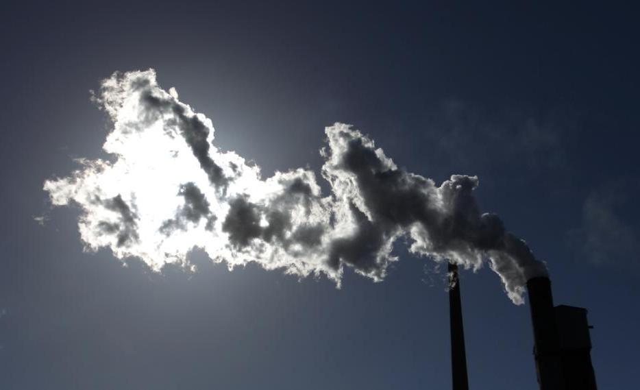 A Poluição do Ar Afeta a Saúde Infantil