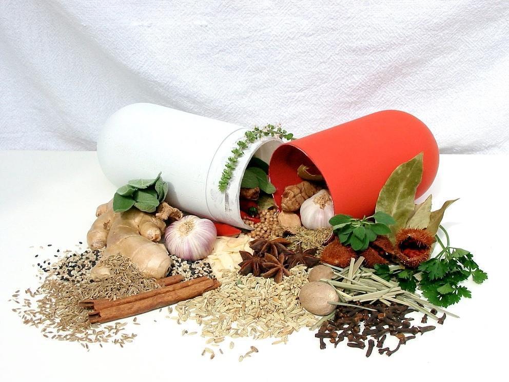 Fitoterapia, Quando a Planta é Oferecida Como uma Medicina Alternativa