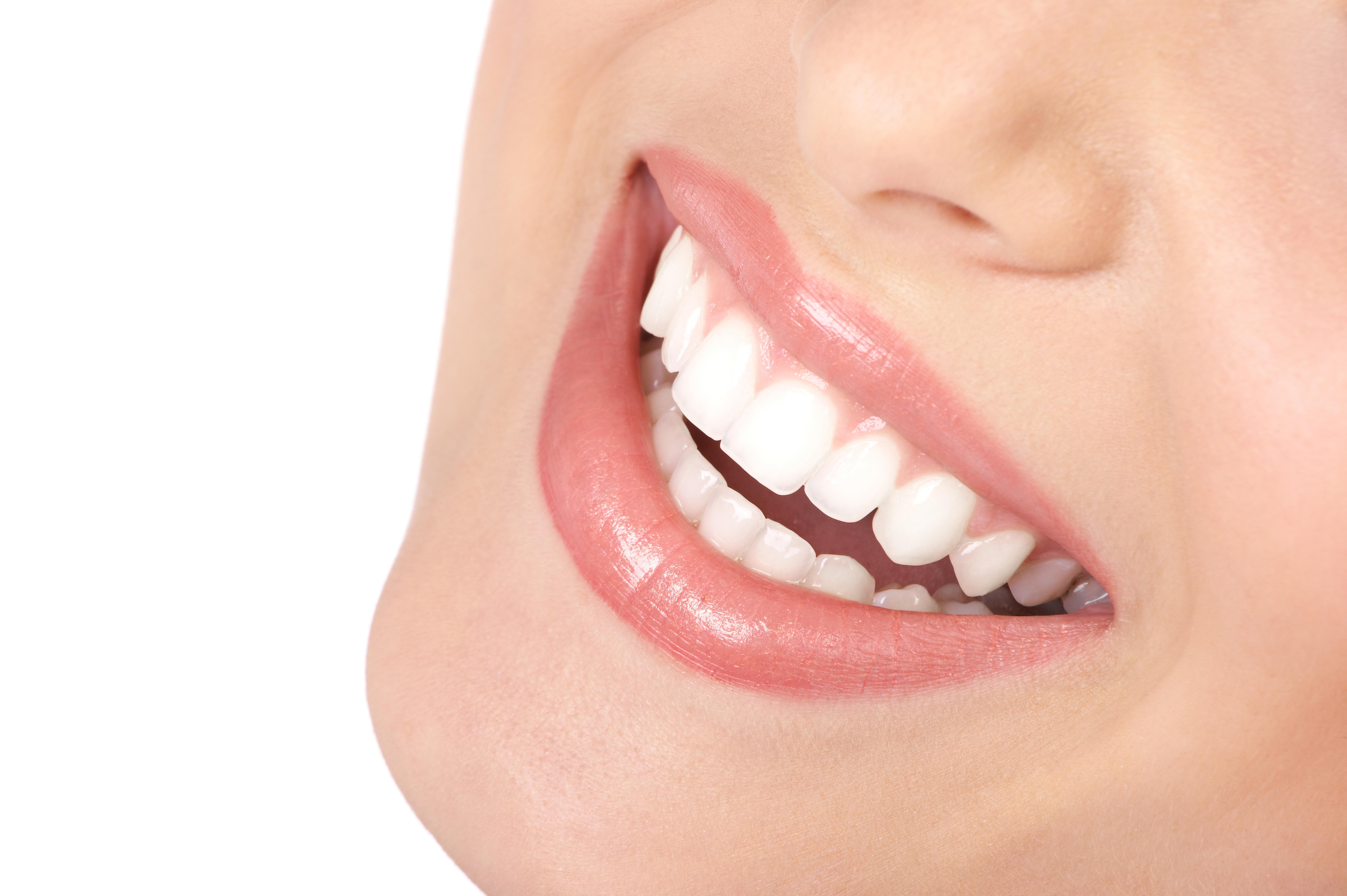 Novos Tratamentos Com Células-Tronco: Doenças Degenerativas e a Formação de Dentes