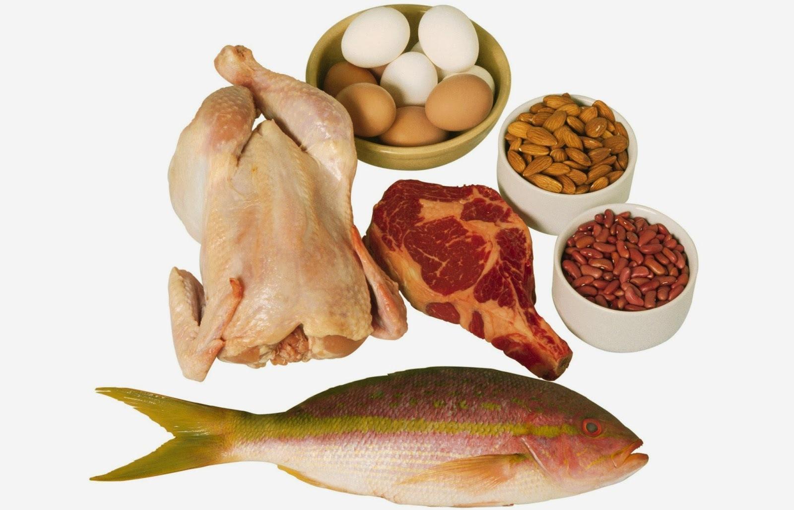 Prós e Contras das Dietas Ricas em Proteínas