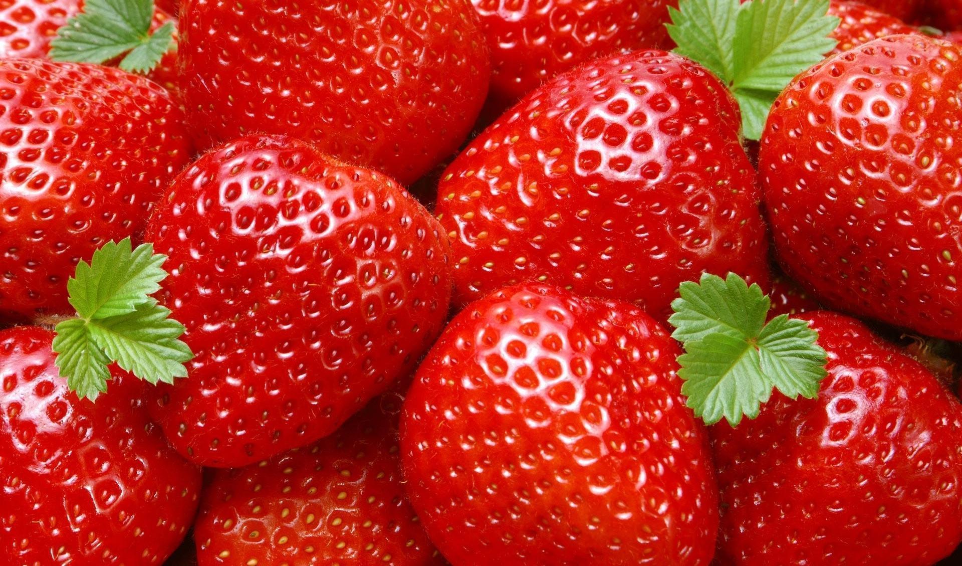 O Consumo de Morangos Reduz o Colesterol