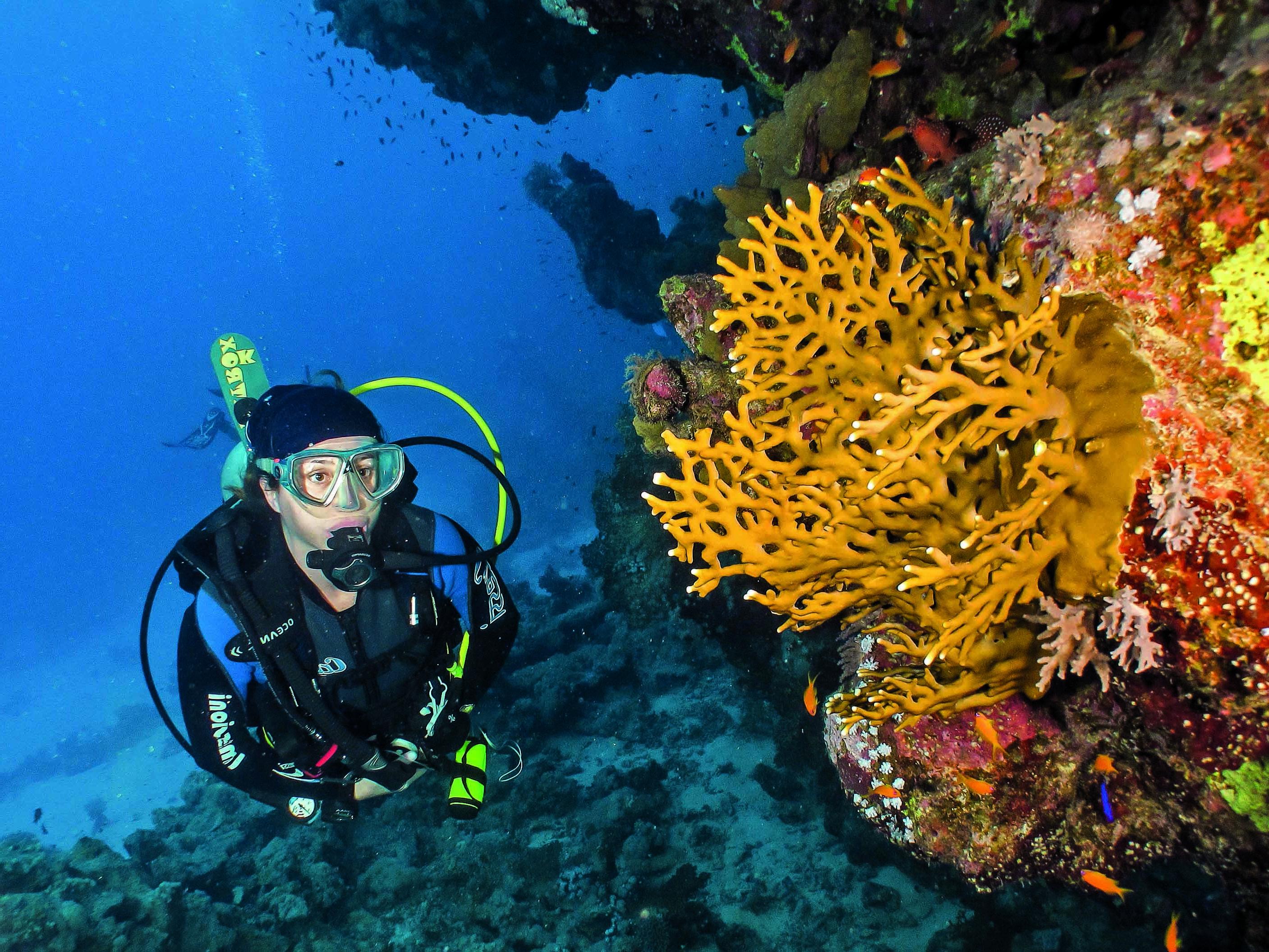 Benefícios Físicos do Mergulho