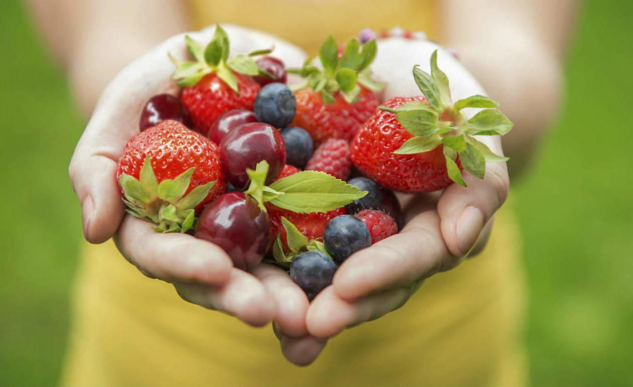 Nos Alimentos Não Existe Colesterol Bom ou Ruim, Simplesmente Existe Colesterol