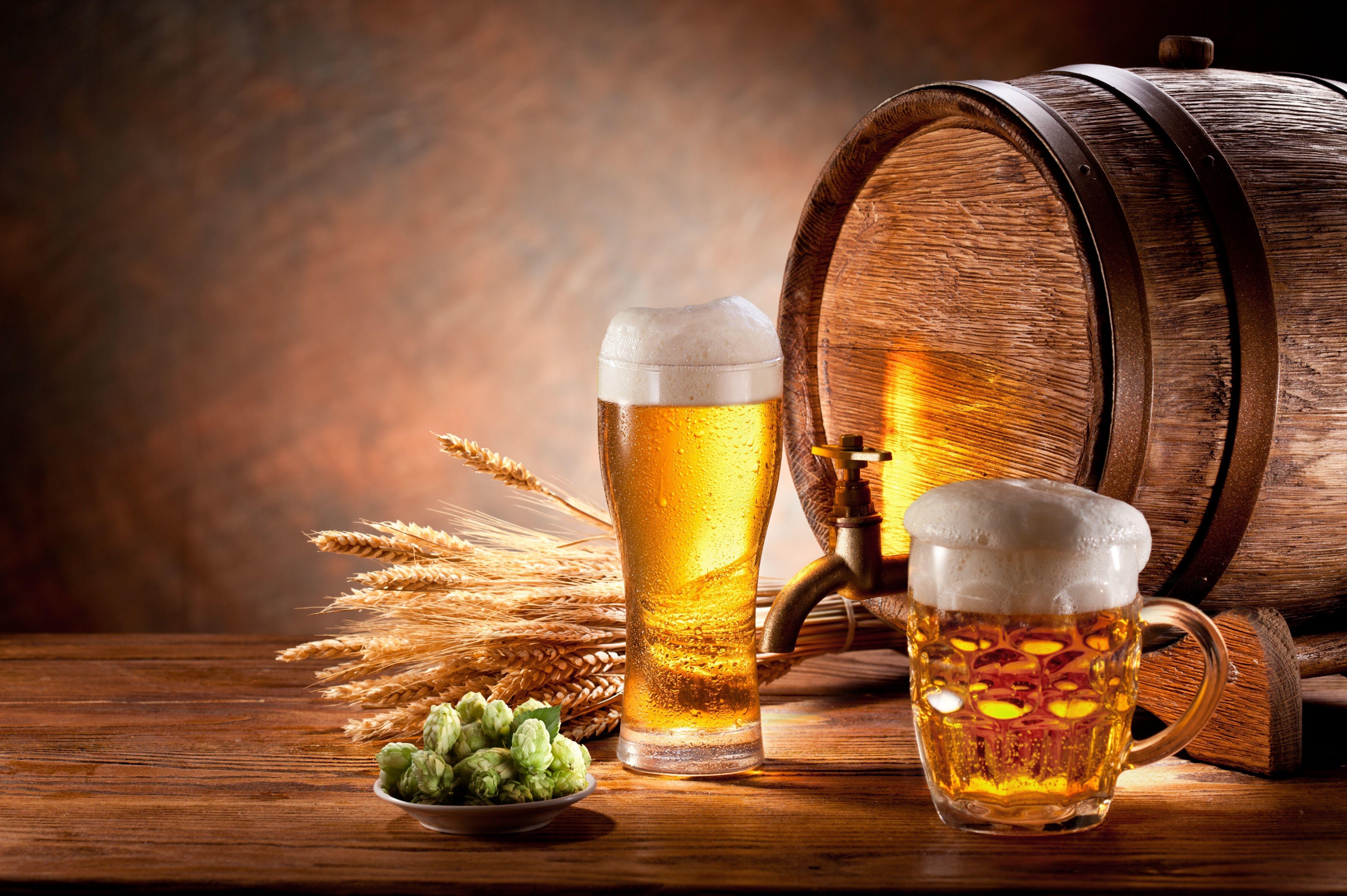 Por Que a Cerveja Engorda?