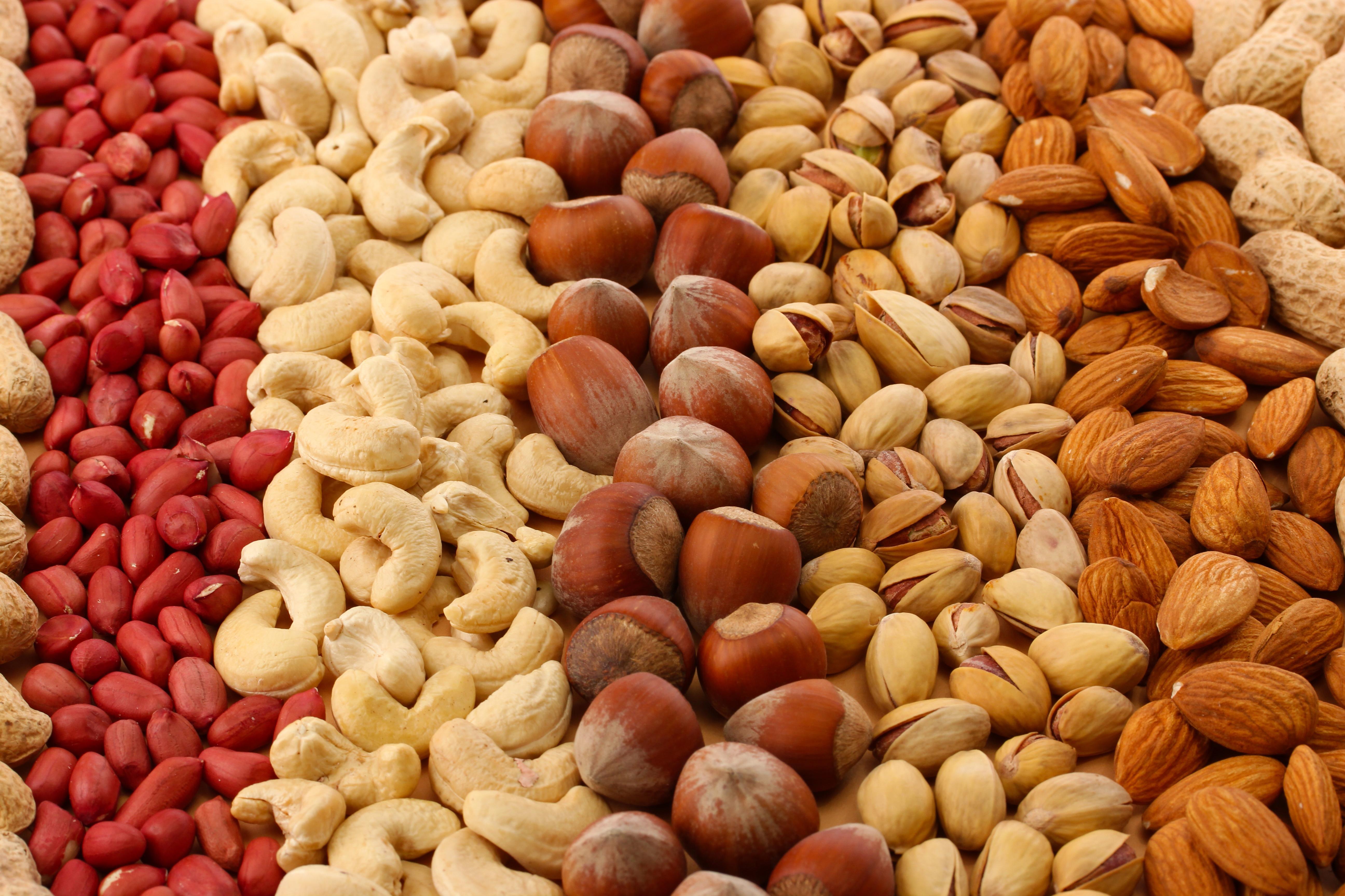 A Importância, Nutrientes e Propriedades dos Frutos Secos na Alimentação
