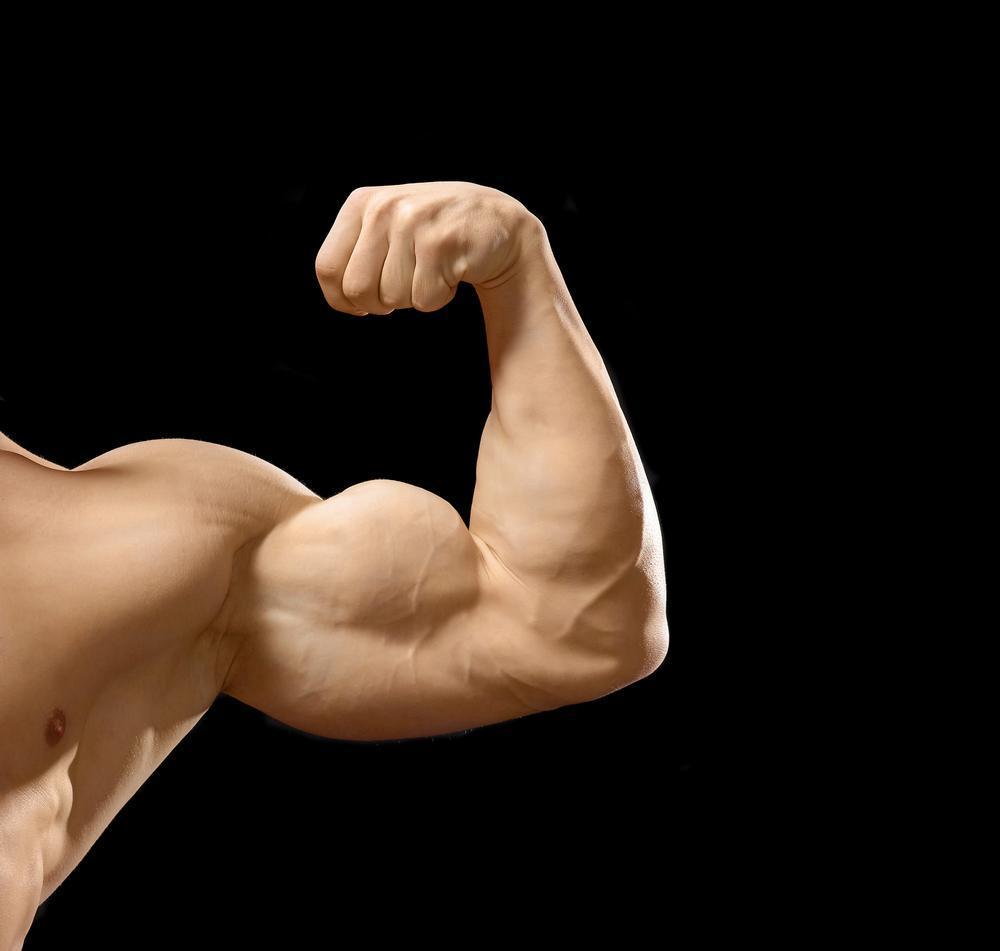O Melhor Exercício Para Desenvolver o Bíceps
