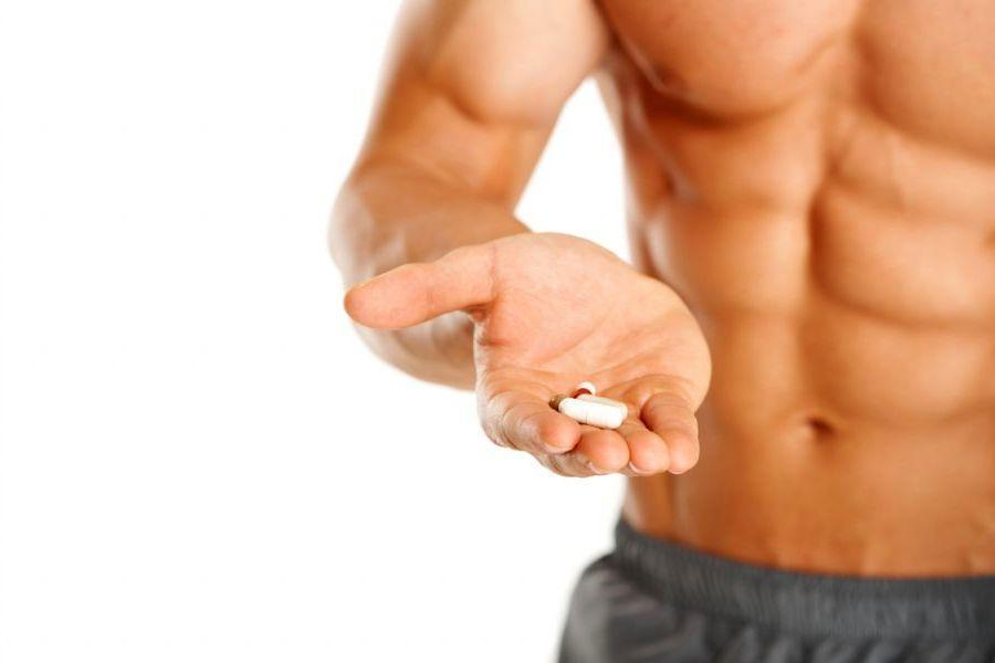 Influência dos Suplementos de Óxido Nítrico nas Diferentes Fibras Musculares