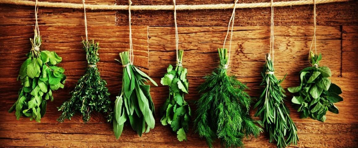 Cinco Ervas e Especiarias com Poderosos Benefícios para a Saúde