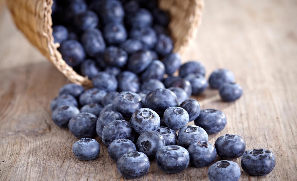 Benefícios do Mirtilo Azul
