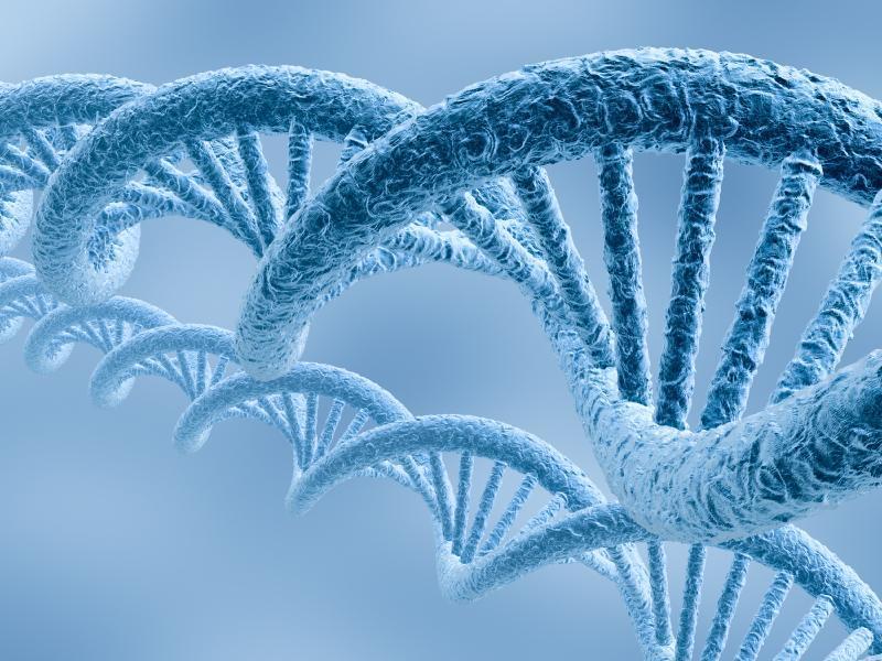 Tudo Sobre o Teste Genético