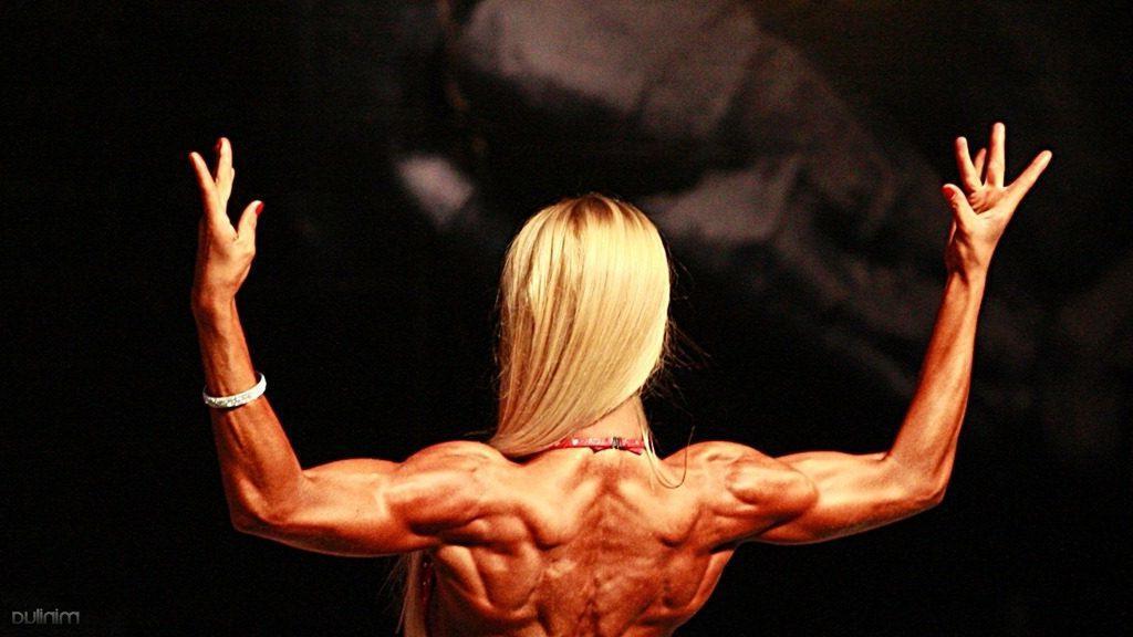 Todos os Músculos do Corpo Humano e Suas Funções