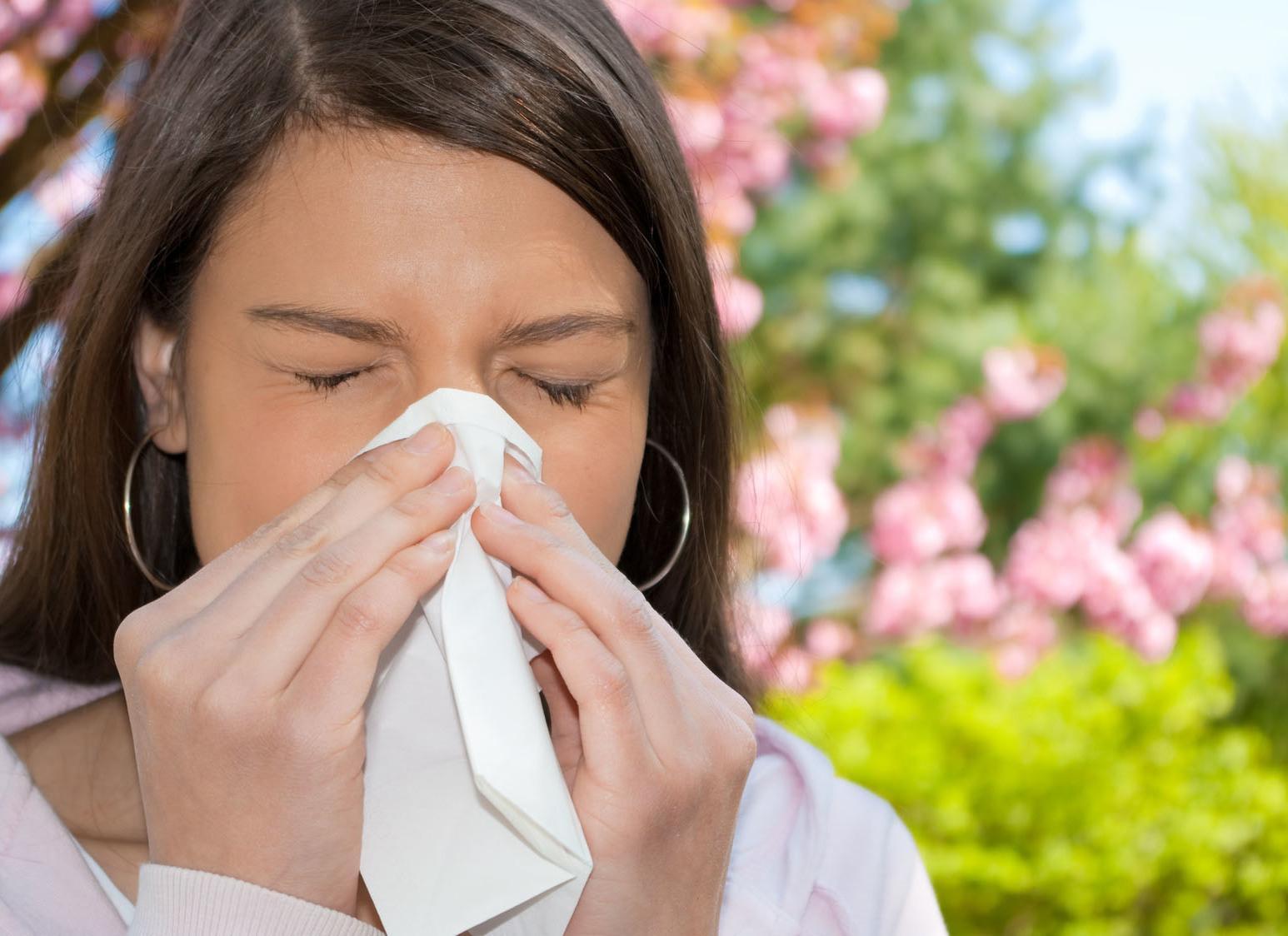 Remédios Caseiro Para Alergias
