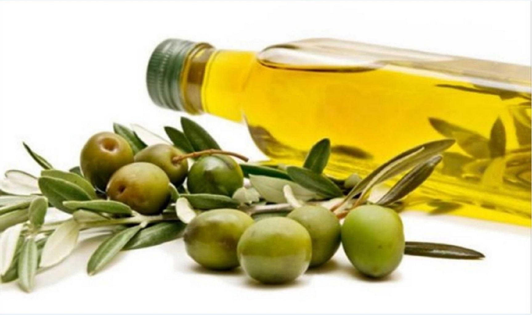 O Azeite de Oliva Extra Virgem: Fonte Inesgotável de Saúde