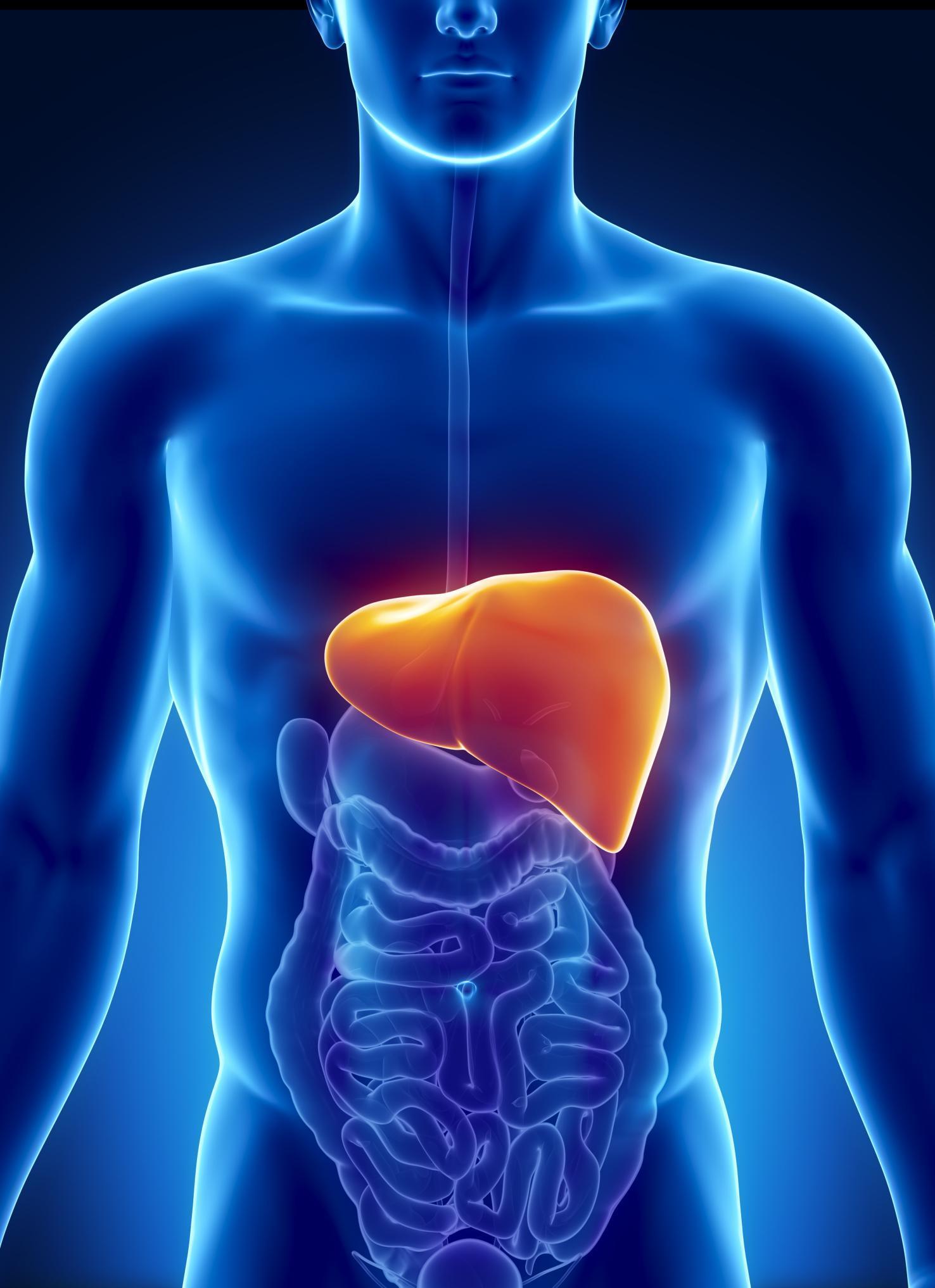 Remédios Caseiros Para Hepatite
