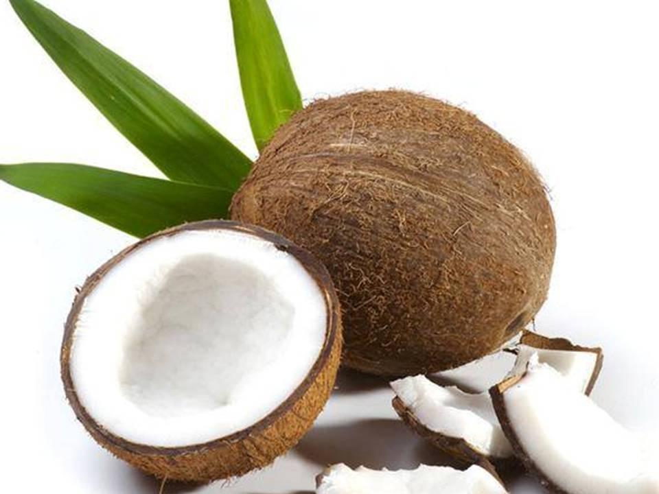 Grandes Propriedades do Coco
