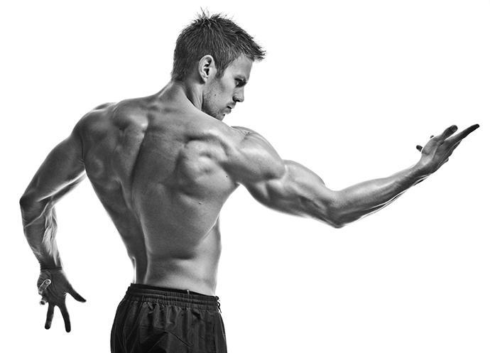 O Excesso de Proteína Não Necessariamente te Torna Mais Musculoso