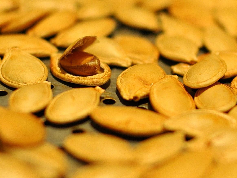 Sementes de Abóbora: Benefícios, Propriedades e Calorias
