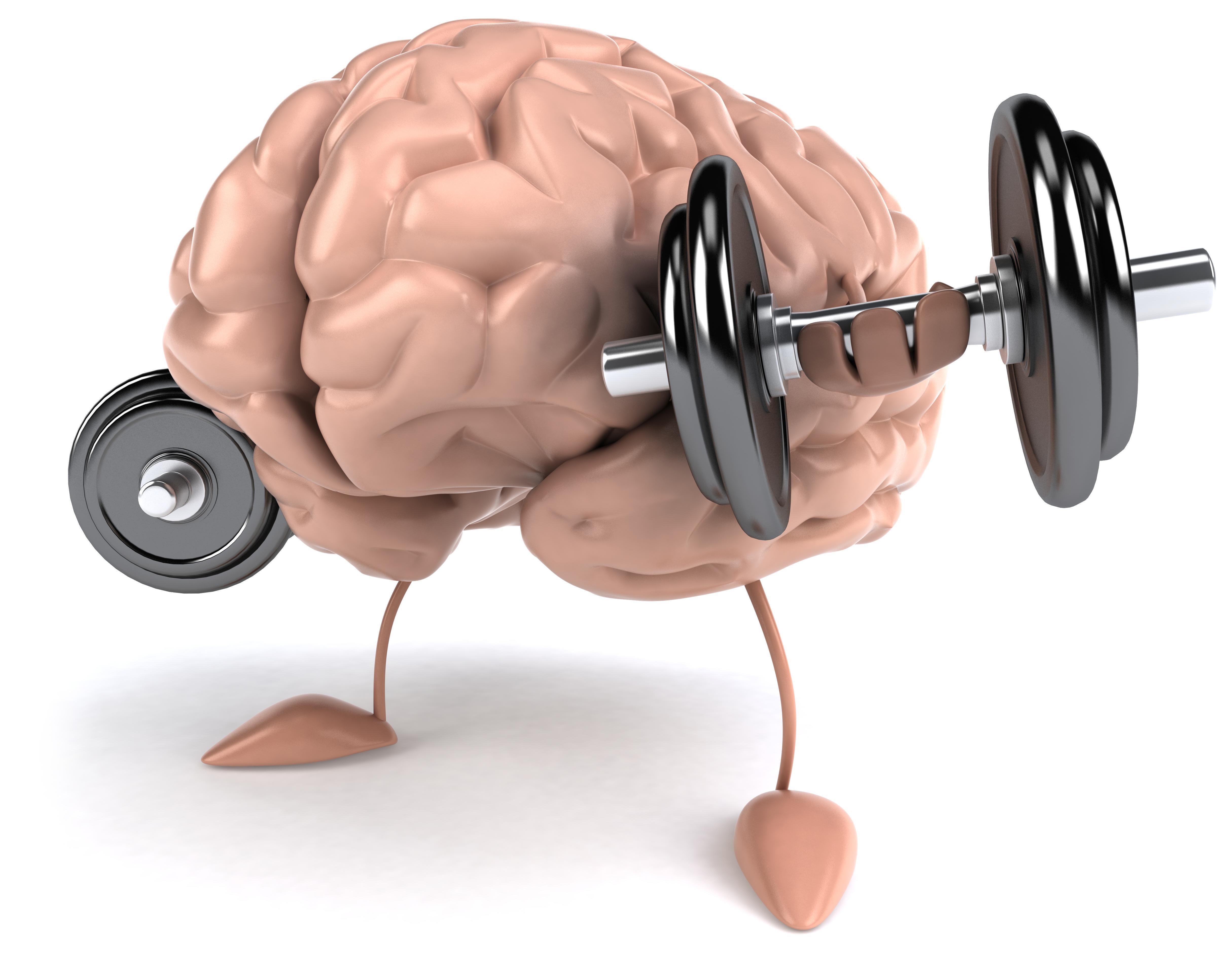 Exercícios Para Ter Uma Memória a Prova de Esquecimento